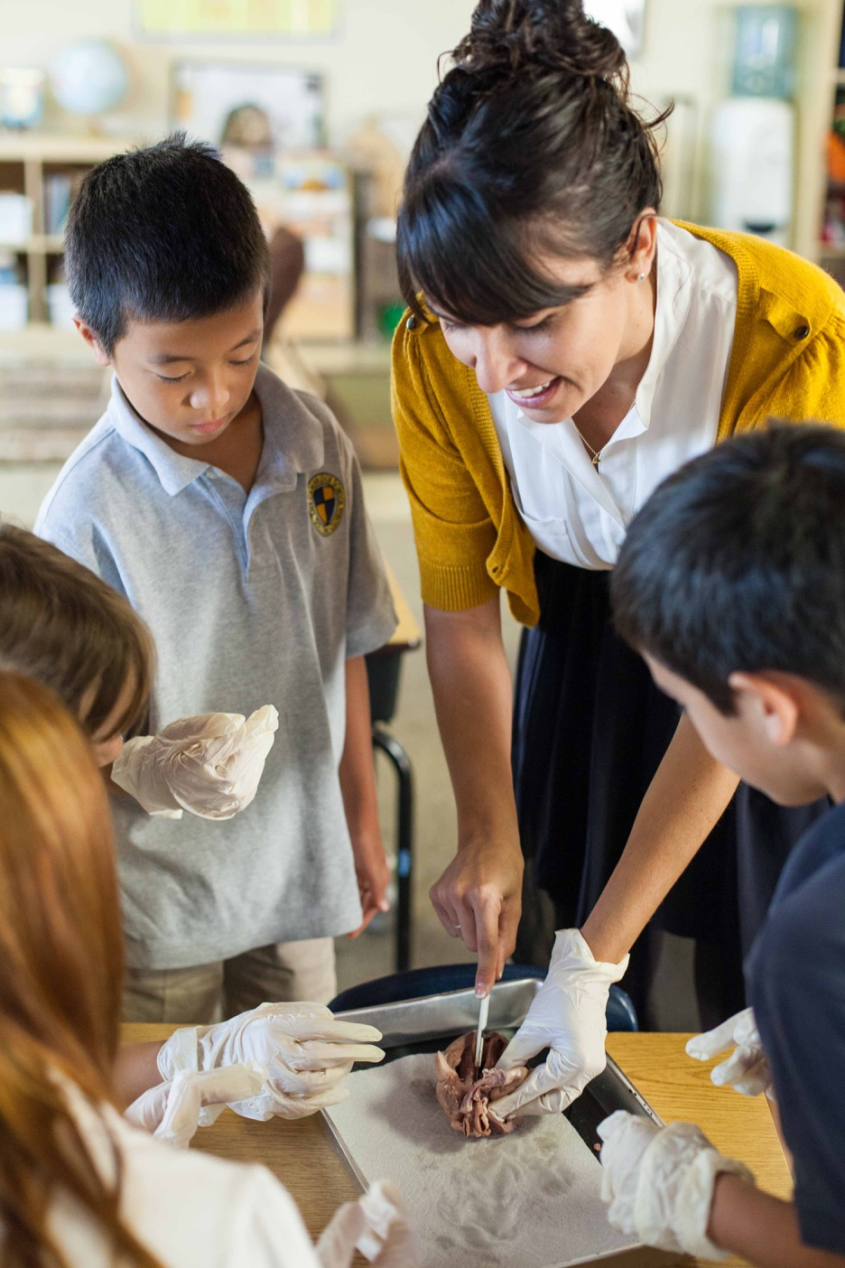 1415-2b-Heart-Dissection-10-web